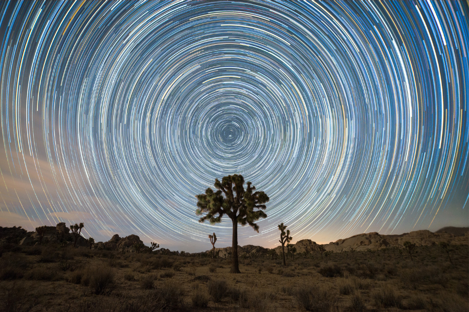 Star Trails - Psychedelic Sky