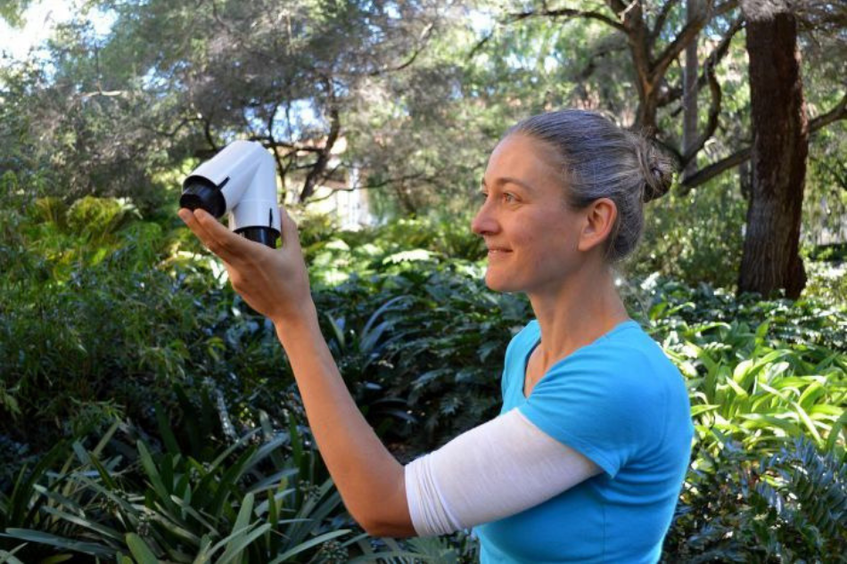 If you really listen, can you hear the plants speak? This researcher says yes.