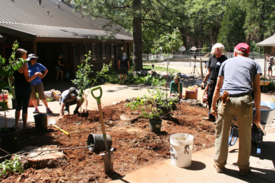 Restoration groups use permaculture to rebuild in the wake of the Camp Fire