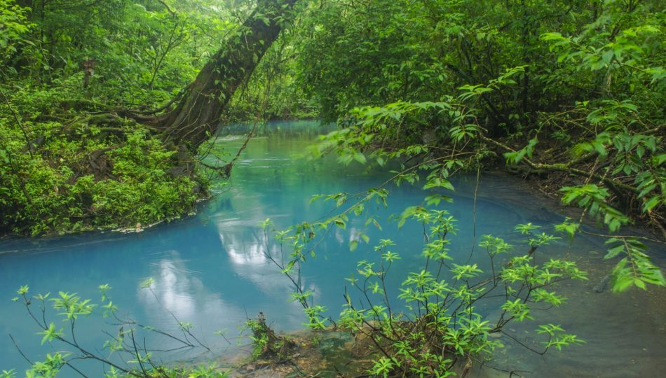 Costa Rica awarded with UN's highest environmental honor