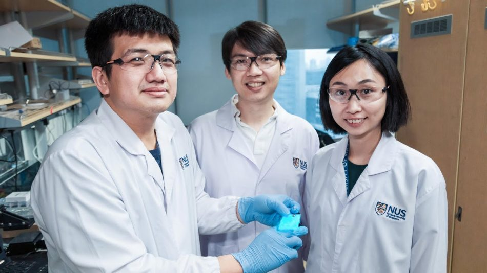 Novel material could make digital screens bend and heal themselves