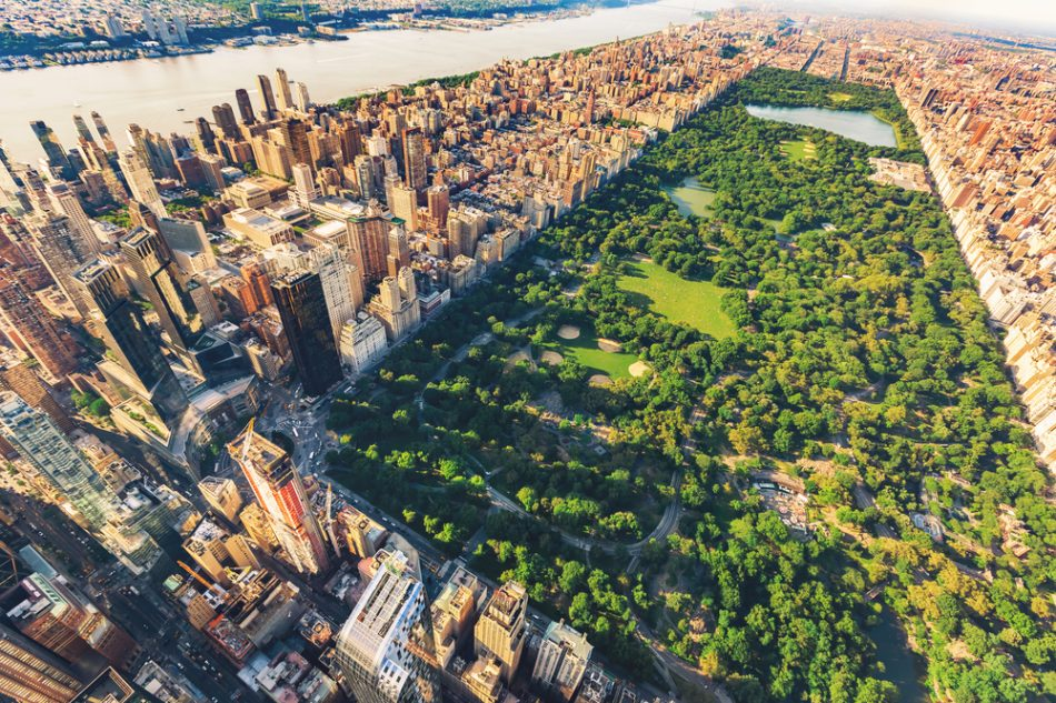 Central Park and other open spaces are about to get an organic upgrade | The Optimist Daily: Making Solutions the News
